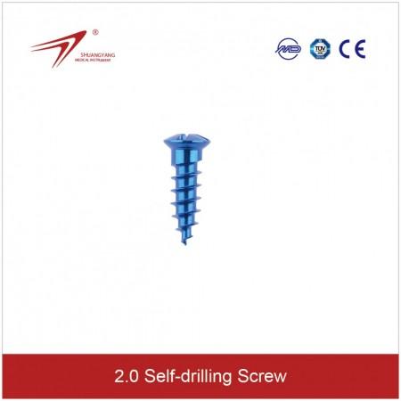φ2.0 Cross head Screw. ჯვარედინთავიანი ჭანჭიკი, 2.0მმ